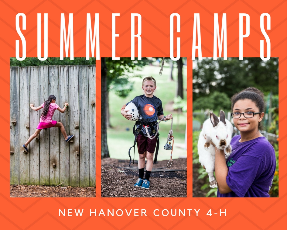 New Hanover County Summer Camps