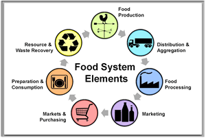 Food System Elements