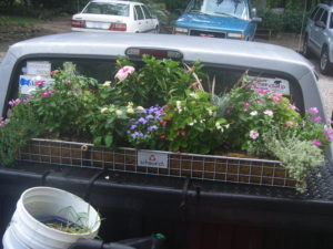 container garden in back of pickup truck