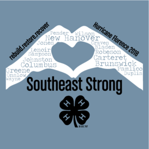 Cover photo for Southeast District 4-H Relief Fundraiser
