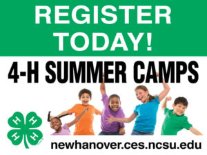 Cover photo for 4-H Summer FUN Camps 2019!
