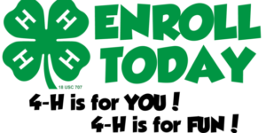 Cover photo for 4-H Enroll/Re-Enroll for 2020 with 4HOnline