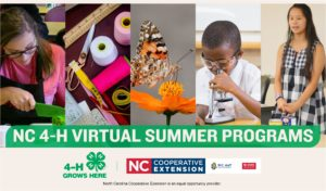 Cover photo for NOW OPEN: NC 4-H Virtual Summer Programs