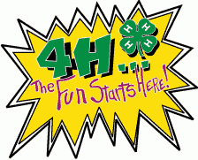 Cover photo for New Hanover 4-H VIRTUAL Summer Activities 2020