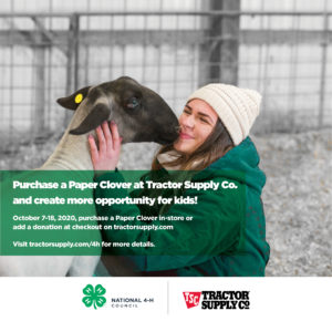 Cover photo for Tractor Supply Paper Clover Promotion